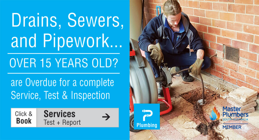$165 Plumbing Service and Check