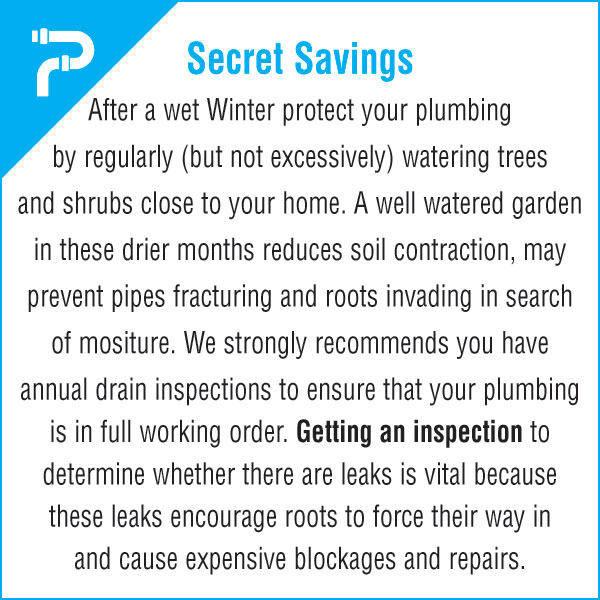 Plumbing Drains - Secret Savings